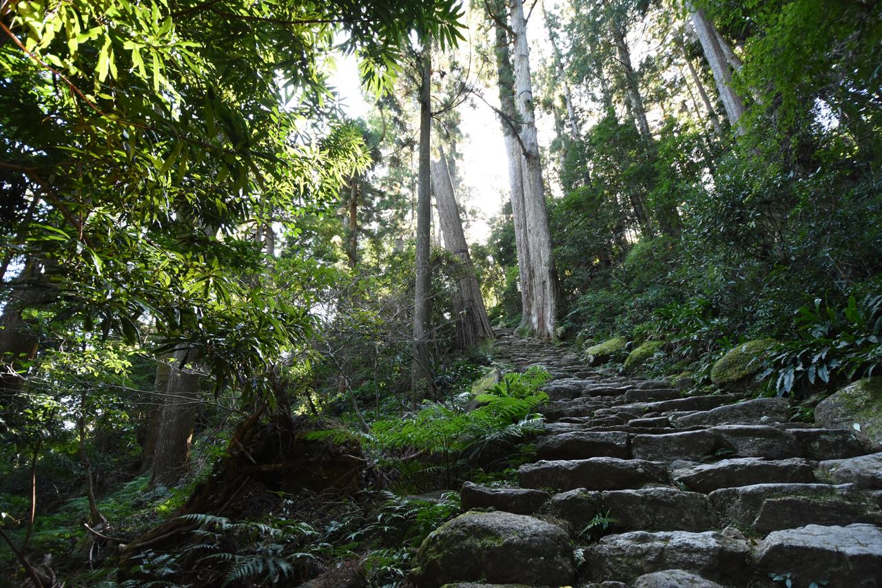 那智の滝から熊野那智大社へ
