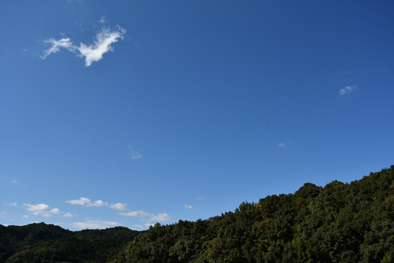 帰り際、八咫烏のような雲に出会う